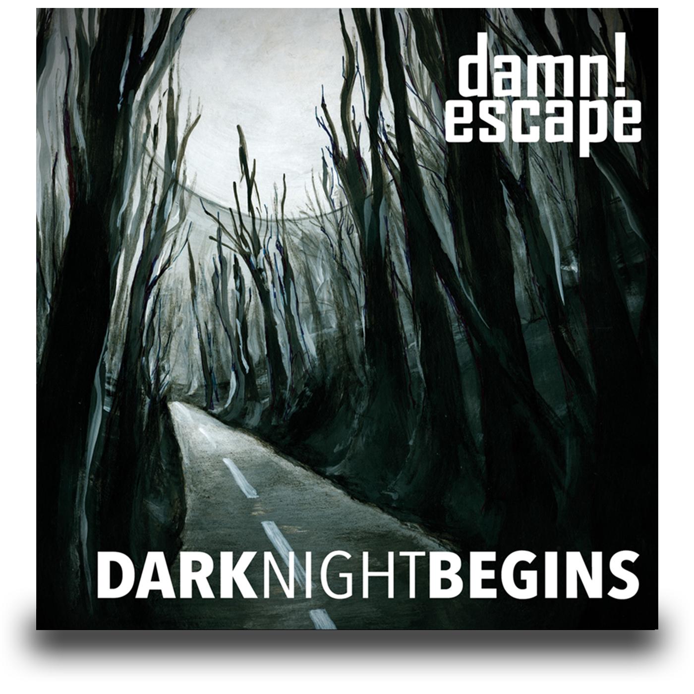 DarkNightBegins